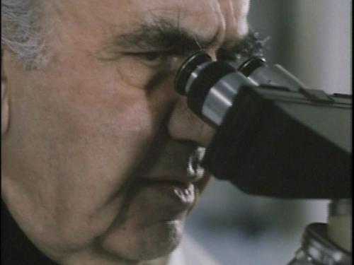 amainkmicroscopio