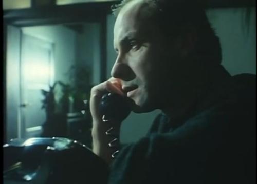 amaliatelefono