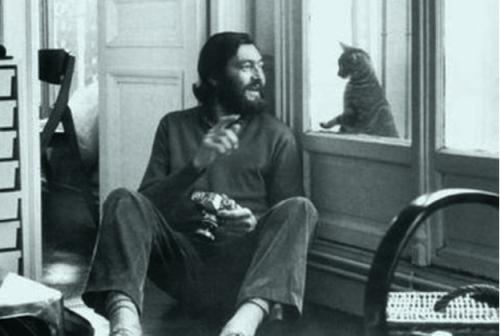 "Julio Cortázar, escritor argentino autor de la novela ""Rayuela"" (""Hopscotch"" ),  mira a través del vidrio de la ventana a su gato Theodor W. Adorno.. Ver pingback."