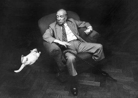 Jorge Luis Borges y gato blanco, tendido boca arriba.