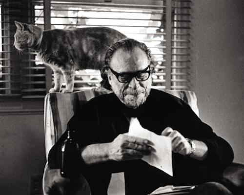 Charles Bukowski y su gato detrás, delante de la ventana