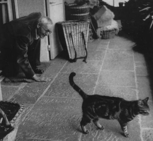 """Hermann Hesse, novelista, y premio Nobel de Literatura, autor de """"Siddhartha"""" y """"Demian"""", intenta captar la atención de su gato, en cuatro patas."""