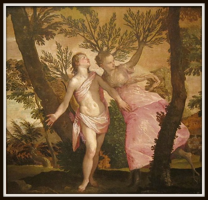 """Apollo and Daphne"" by Paolo Veronese (1560/ 1565).-"