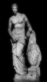 """""""The Colonna Venus"""" (812) is a Roman marble copy of the lost Aphrodite of Cnidus by Praxiteles, conserved in the Museo Pio-Clementino as a part of the Vatican Museums' collections. It is now the best-known and perhaps most faithful Roman copy of Praxiteles' original. Museo Pio-Clementino. Vatican."""