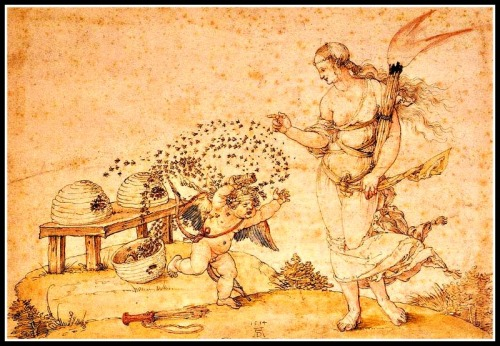 """Cupid, the Honey Thief"" by Albrecht Dürer ("