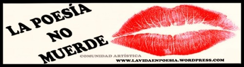 Click above to visit the blog / Click en el logo para ingresar al blog.~
