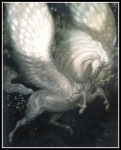 pegasus011