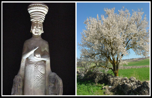 On the Left: Phrygian statue of Agdistis from the mid-6th century BCE. On the Right: An almond tree.
