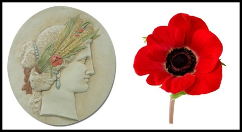 On the Left: Demeter Relief, 18Th Century. Versailles. On the right: A Poppy.