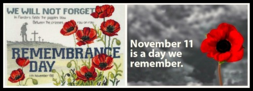 Rememberance-Day-Poppies