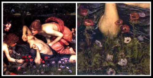"""The Awakening of Adonis"" by John William Waterhouse. (1900) / On the right: Details: Anemones."