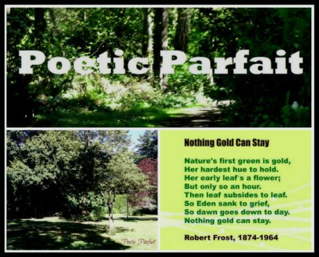 Click above to read the analysis of the Poem 'Nothing Gold Can Stay' by Robert Frost on Poetic Parfit.