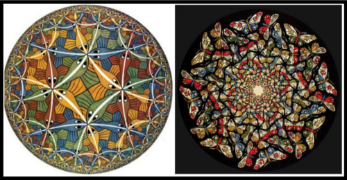 On the Left: Hyperbolic tessellation: Circle Limit III, by M. C. Escher. 1959. On the right: Butterfly by M. C. Escher. 1960´s.