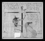 The egyptian dog-jackal god, Anubis.