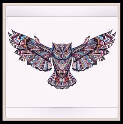 Owl drawing.